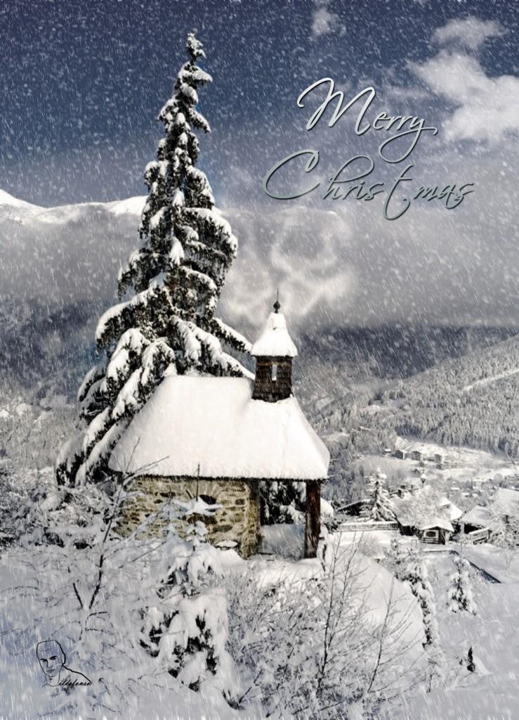 Christmas card 2010 2