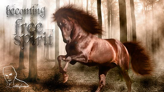 En este momento estás viendo Wallpaper caballo de fantasía (tutorial de Photoshop)