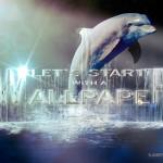 Tutorial Photoshop // Wallpaper delfín nocturno
