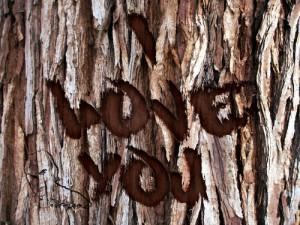 Lee más sobre el artículo Grabado en corteza de árbol // Tutorial Photoshop (San Valentín)