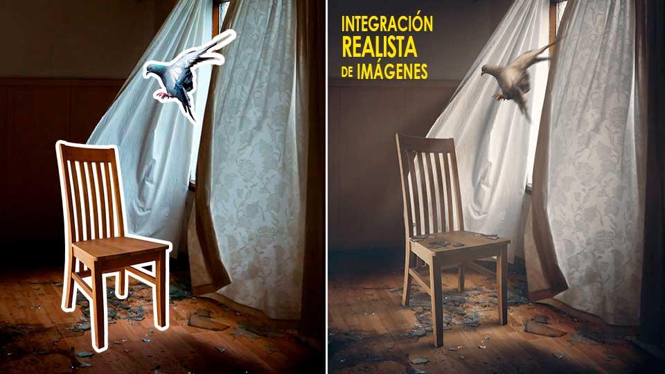 integracion-paloma