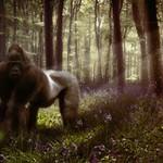 Tutorial Photoshop // Cómo crear profundidad con la Iluminación by @ildefonsosegura